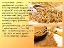 Мікроелемент селен як есенціальний компонент їжі почали розглядати в середині...