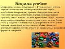 Мінеральні речовини Мінеральні речовини є структурною та функціональною основ...