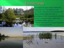 На території парку представлені як природні, так і трансформовані людською ді...