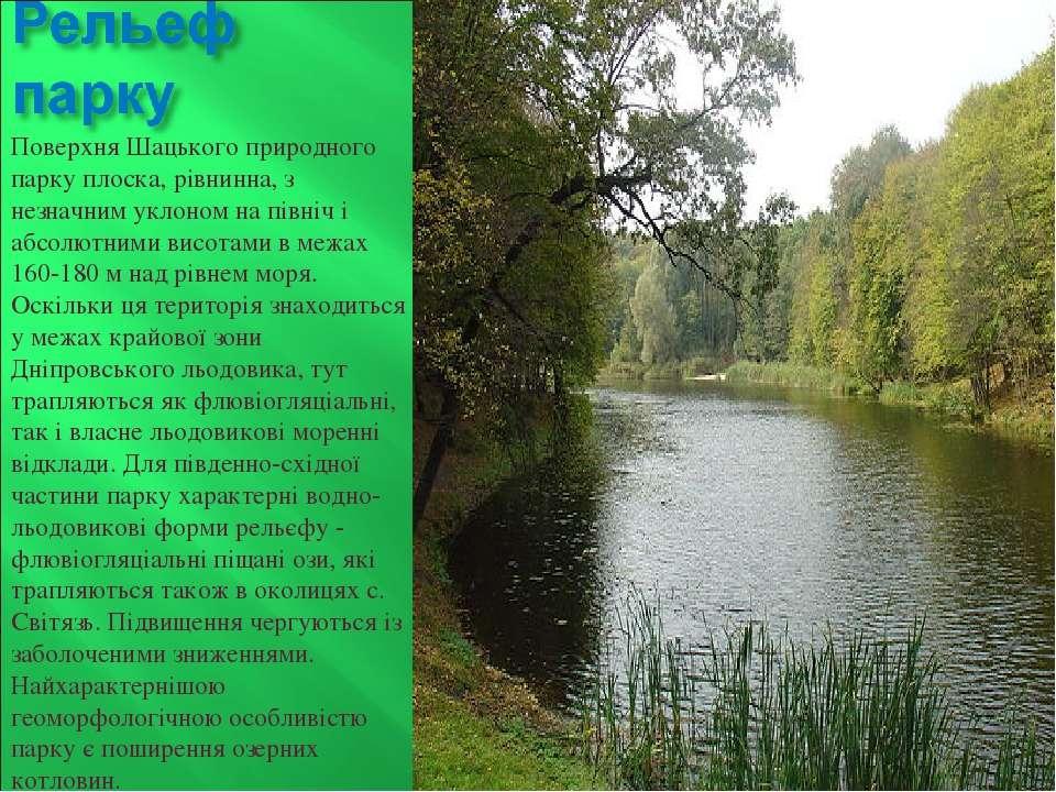 Поверхня Шацького природного парку плоска, рівнинна, з незначним уклоном на п...