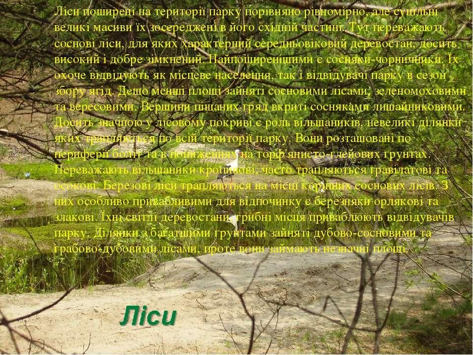 Ліси поширені на території парку порівняно рівномірно, але суцільні великі ма...