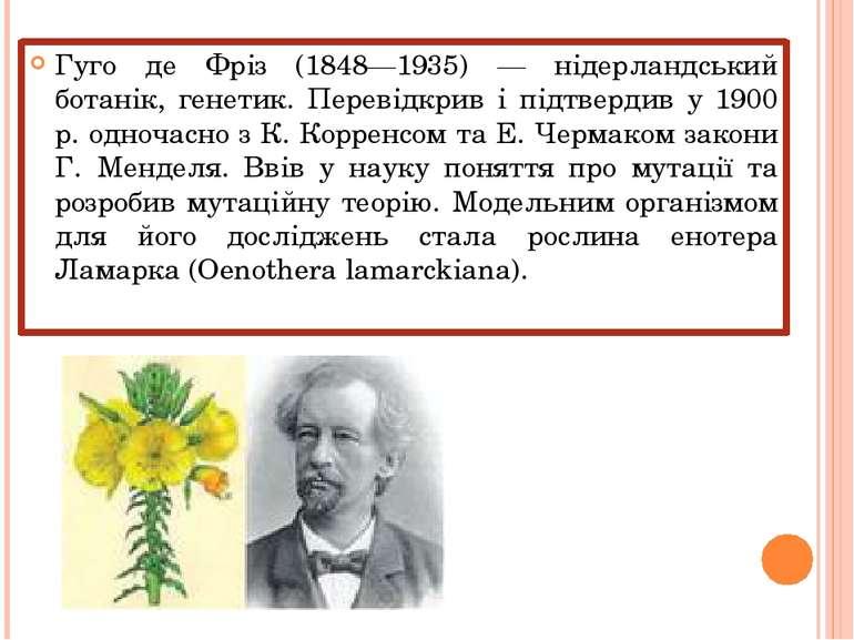 Гуго де Фріз (1848—1935) — нідерландський ботанік, генетик. Перевідкрив і під...