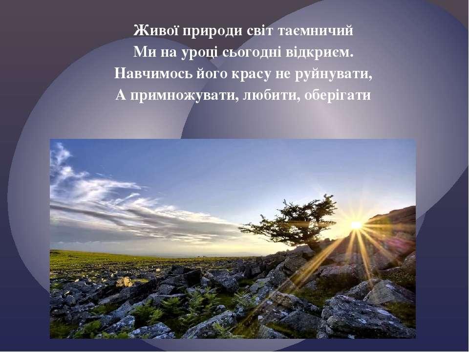 Живої природи світ таємничий Ми на уроці сьогодні відкриєм. Навчимось його кр...