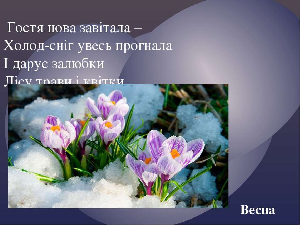 Гостя нова завітала – Холод-сніг увесь прогнала І дарує залюбки Лісу трави і ...