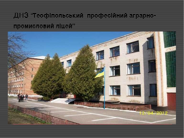 """днз """"Теофіпольський професійний аграрно-промисловий ліцей"""""""