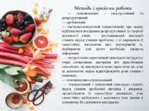 Методи і прийоми роботи — пояснювально - ілюстративний та репродуктивний — пр...