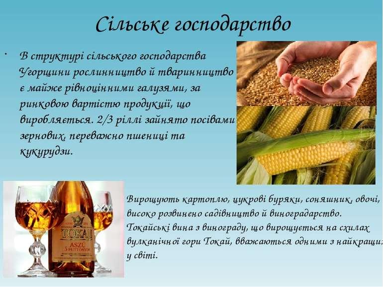 Сільське господарство В структурі сільського господарства Угорщини рослинницт...