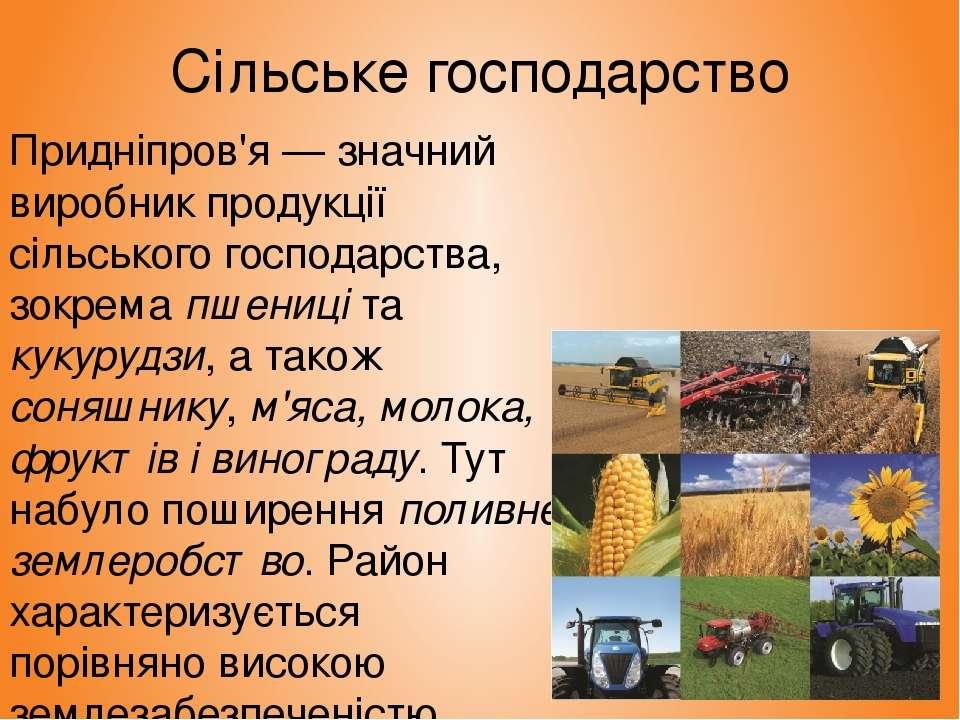 Сільське господарство Придніпров'я — значний виробник продукції сільського го...
