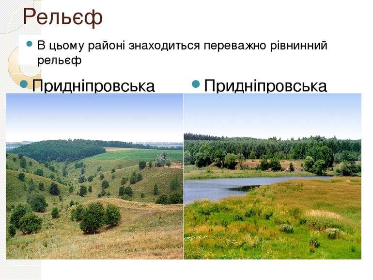 Рельєф В цьому районі знаходиться переважно рівнинний рельєф Придніпровська в...