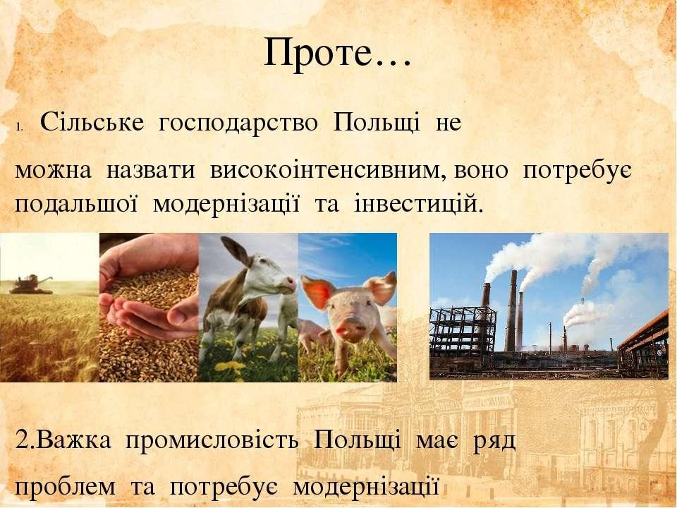 Проте… Сільське господарство Польщі не можна назвати високоінтенсивним,...