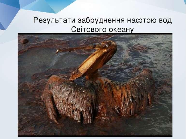 Результати забруднення нафтою вод Світового океану