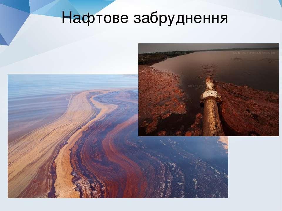 Нафтове забруднення