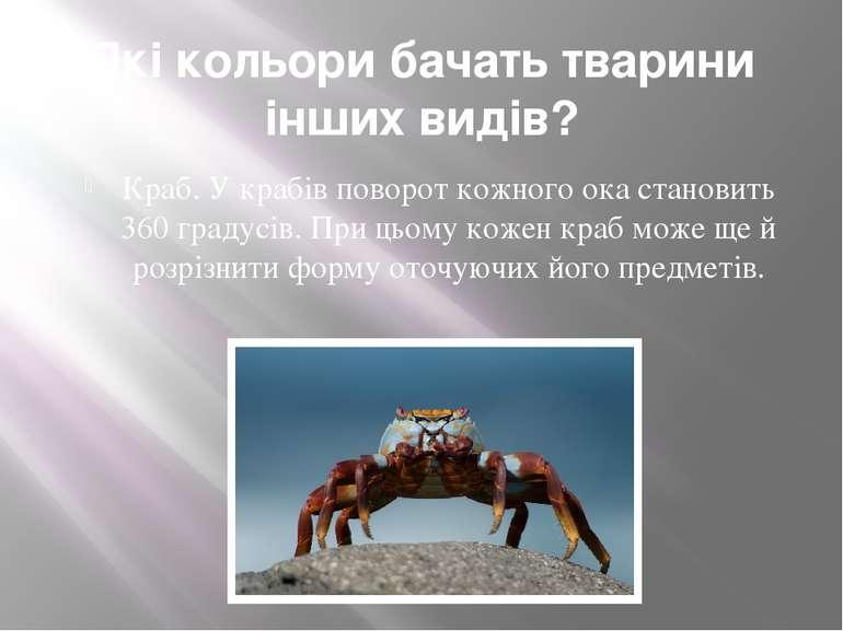 Які кольори бачать тварини інших видів? Краб. У крабів поворот кожного ока ст...