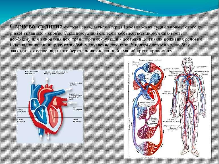 Інфаркт міокарда - гостре захворювання серця, обумовлене розвитком одного або...
