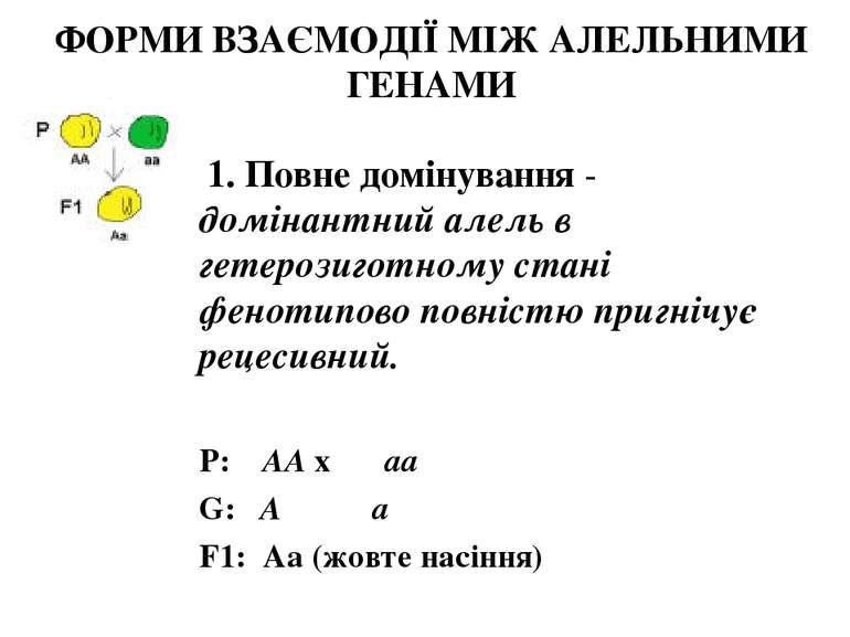ФОРМИ ВЗАЄМОДІЇ МІЖ АЛЕЛЬНИМИ ГЕНАМИ 1. Повне домінування - домінантний алель...