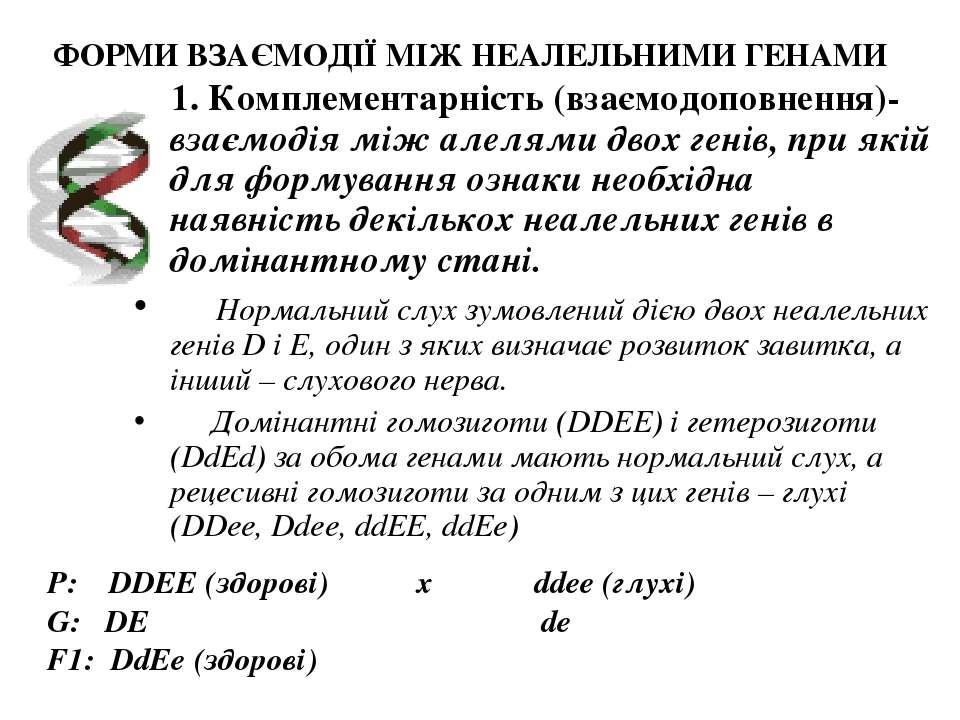 ФОРМИ ВЗАЄМОДІЇ МІЖ НЕАЛЕЛЬНИМИ ГЕНАМИ 1. Комплементарність (взаємодоповнення...