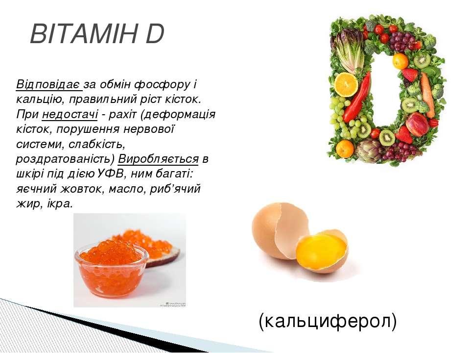 ВІТАМІН D (кальциферол) Відповідає за обмін фосфору і кальцію, правильний ріс...