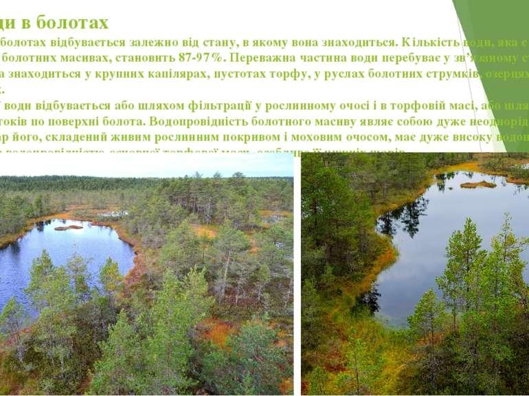Рух води в болотах Рух води в болотах відбувається залежно від стану, в якому...