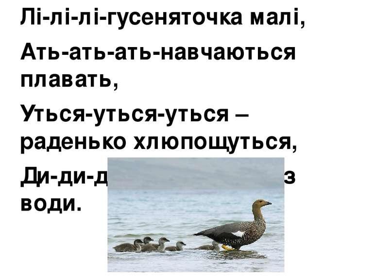 Лі-лі-лі-гусеняточка малі, Ать-ать-ать-навчаються плавать, Уться-уться-уться ...