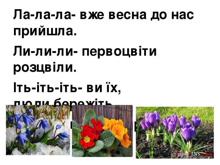 Ла-ла-ла- вже весна до нас прийшла. Ли-ли-ли- первоцвіти розцвіли. Іть-іть-іт...