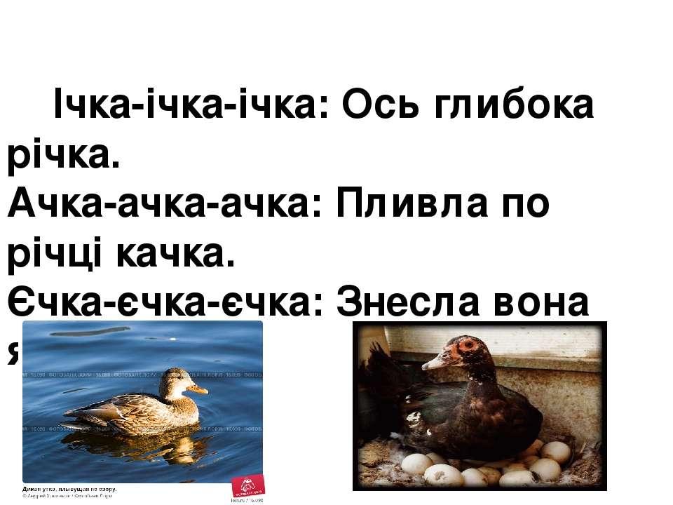 Ічка-ічка-ічка:Ось глибока річка. Ачка-ачка-ачка:Пливла по річці качка. Єчк...