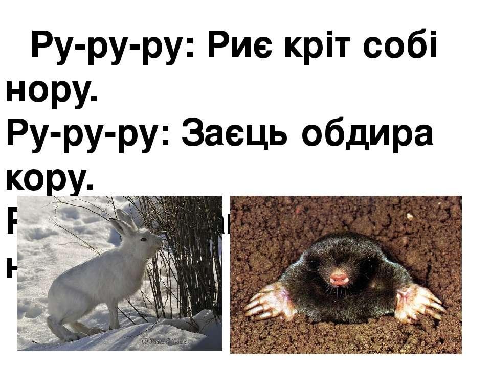 Ру-ру-ру:Риє кріт собі нору. Ру-ру-ру:Заєць обдира кору. Ра-ра-ра:Закінчил...