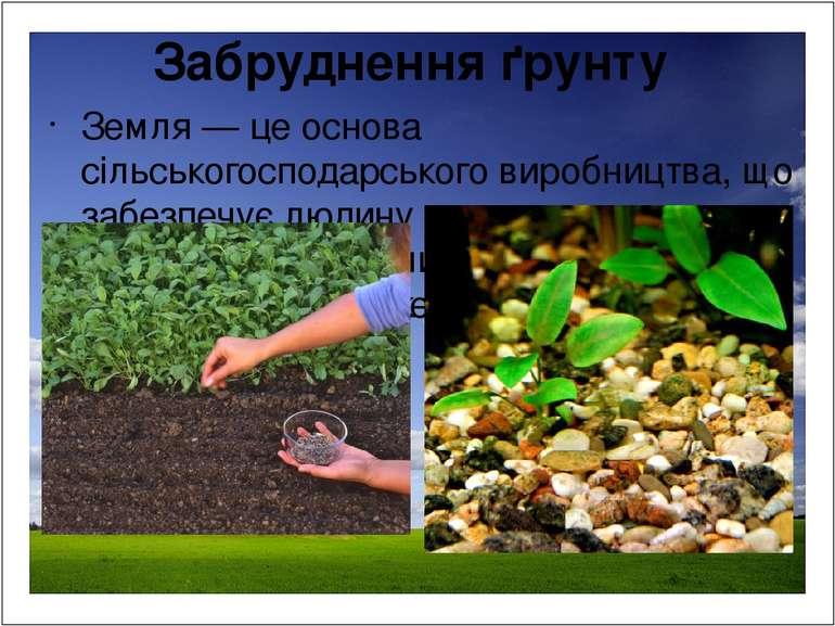 Забруднення ґрунту Земля — це основа сільськогосподарського виробництва, що з...