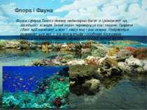 Флора і Фауна Флора і фауна Тихого океану неймовірно багата і різноманітна. ...