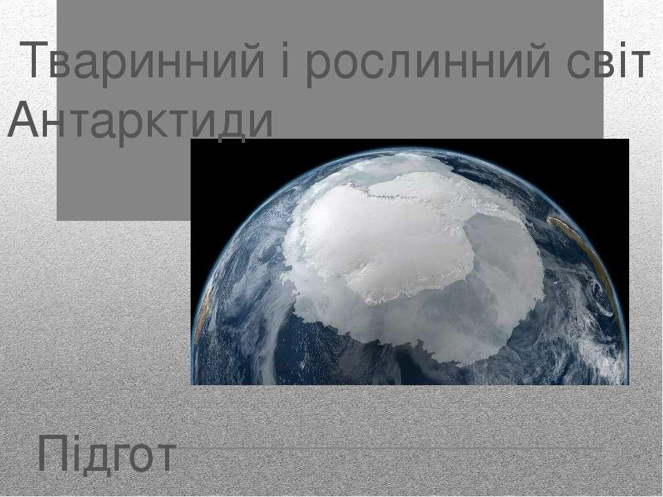 Тваринний і рослинний світ Антарктиди Підготував Костя Борис