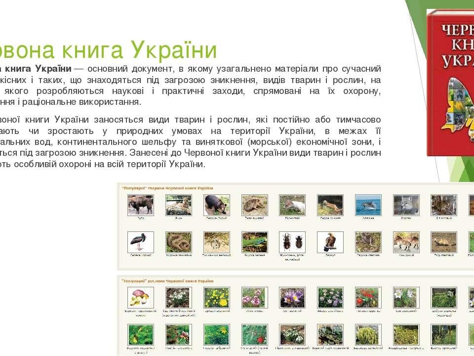 Червона книга України Червона книга України— основний документ, в якому узаг...