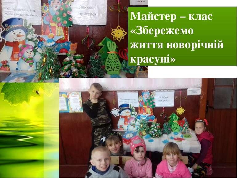 Майстер – клас «Збережемо життя новорічній красуні»