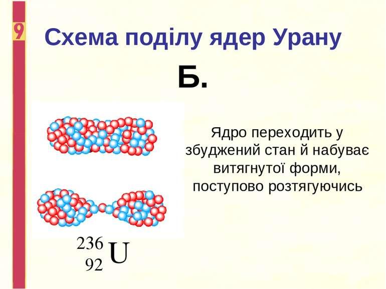 Схема поділу ядер Урану Б. Ядро переходить у збуджений стан й набуває витягну...