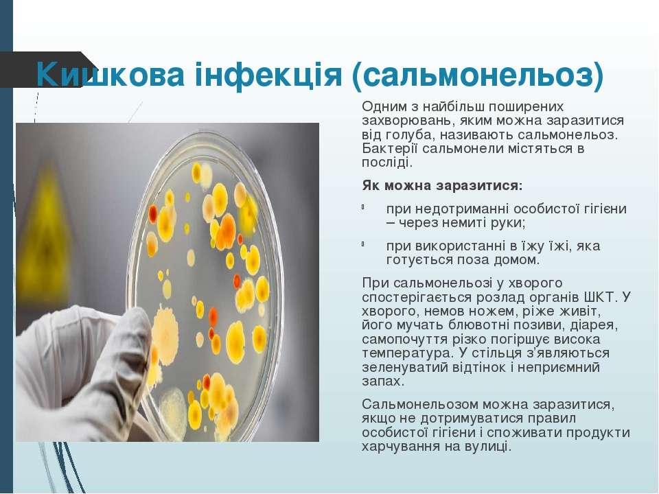 Кишкова інфекція (сальмонельоз) Одним з найбільш поширених захворювань, яким ...