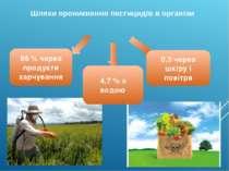 Шляхи проникнення пестицидів в організм 95 % через продукти харчування 4,7 % ...