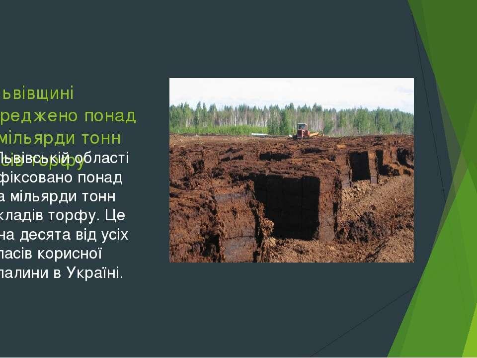 На Львівщині зосереджено понад два мільярди тонн запасів торфу У Львівській о...