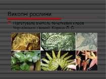 Викопні рослини Підготувала вчитель початкових класів Чортківської гімназії К...