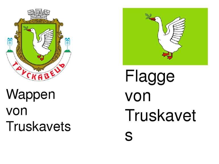 Wappen von Truskavets Flagge von Truskavets