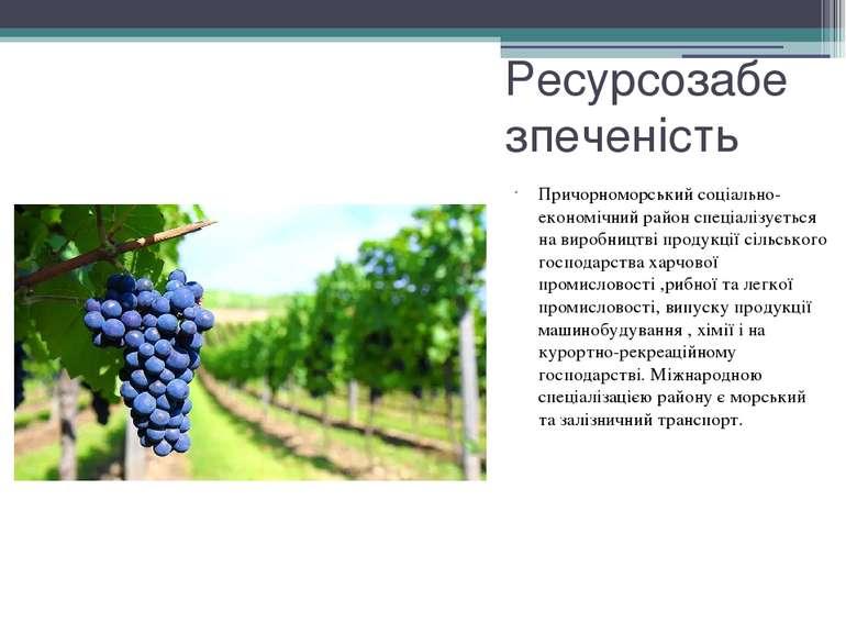 Ресурсозабезпеченість Причорноморський соціально-економічний район спеціалізу...
