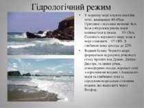 Гідрологічний режим У чорному морі існують постійні течії, завширшки 40-45км....