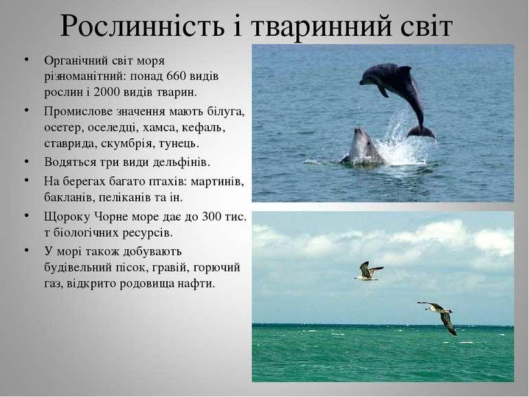 Рослинність і тваринний світ Органічний світ моря різноманітний: понад 660 ви...