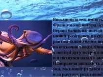 Восьминоги теж вміють літати. Французький натураліст Жан Верані бачив, як зви...