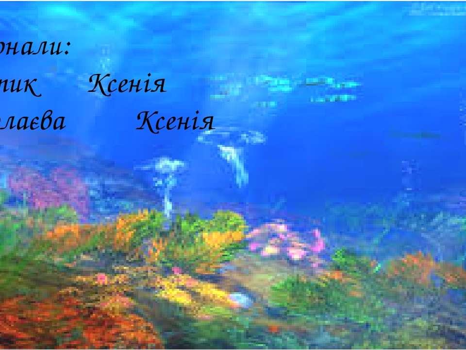 Виконали: Бортик Ксенія Ніколаєва Ксенія