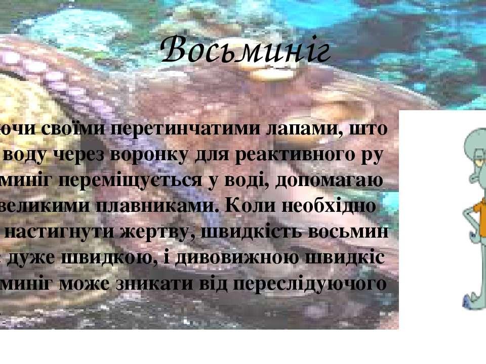 Восьминіг Пульсуючи своїми перетинчатими лапами, штовхаючи воду через воронку...