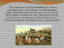 Носії трипільської культури винайшли плуг і колесо, одомашнили бика і коня, с...