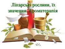 Лікарські рослини, їх значення. Ароматерапія Лікарські рослини, їх значення. ...