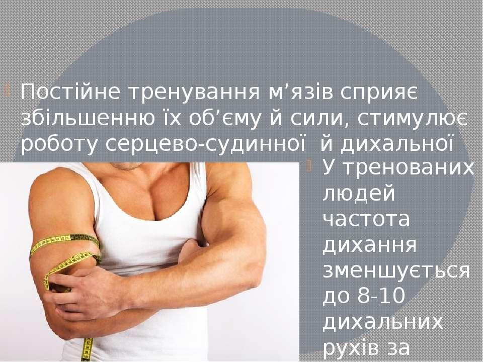Постійне тренування м'язів сприяє збільшенню їх об'єму й сили, стимулює робот...