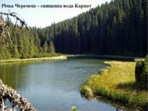 Річка Черемош – священна вода Карпат