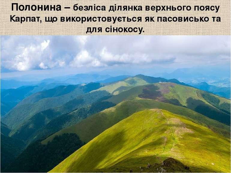 Полонина – безліса ділянка верхнього поясу Карпат, що використовується як пас...