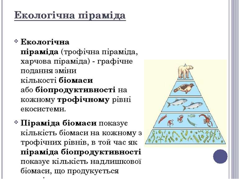 Екологічна піраміда Екологічна піраміда(трофічна піраміда, харчова піраміда)...