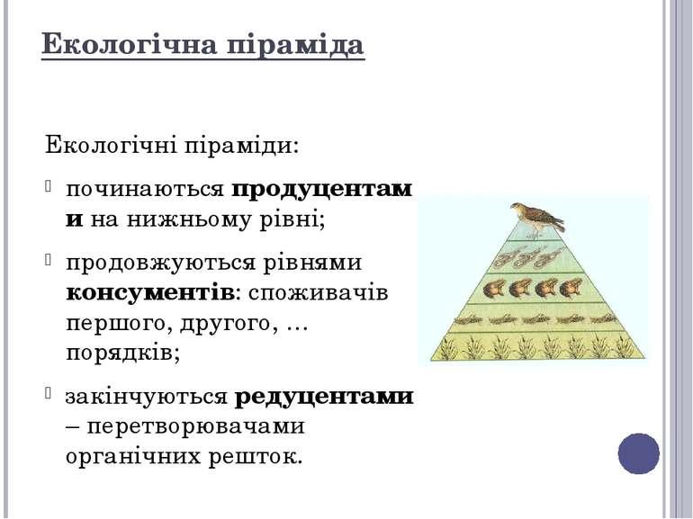 Екологічна піраміда Екологічні піраміди: починаютьсяпродуцентамина нижньому...